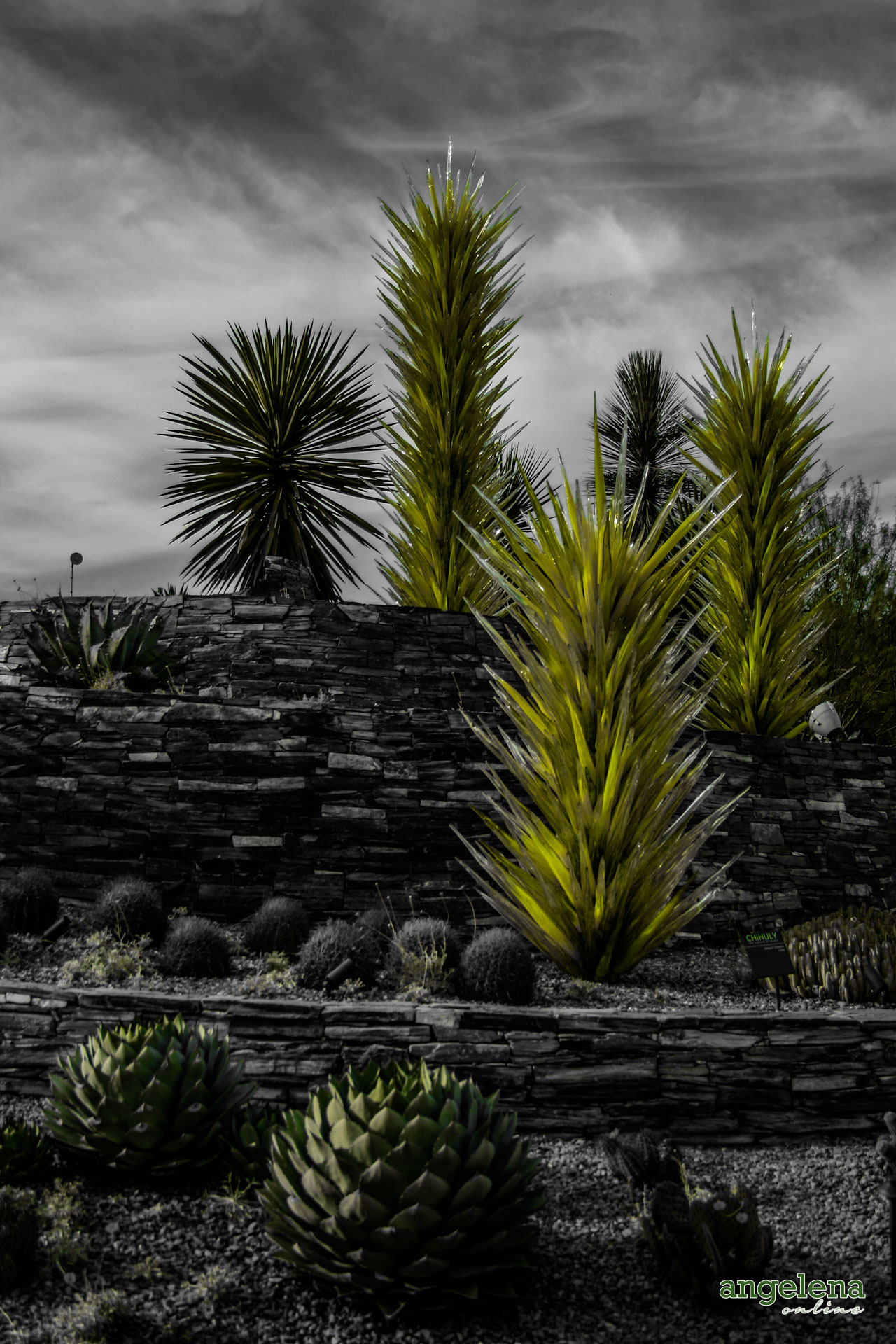 Cacti Sculpture Phoenix