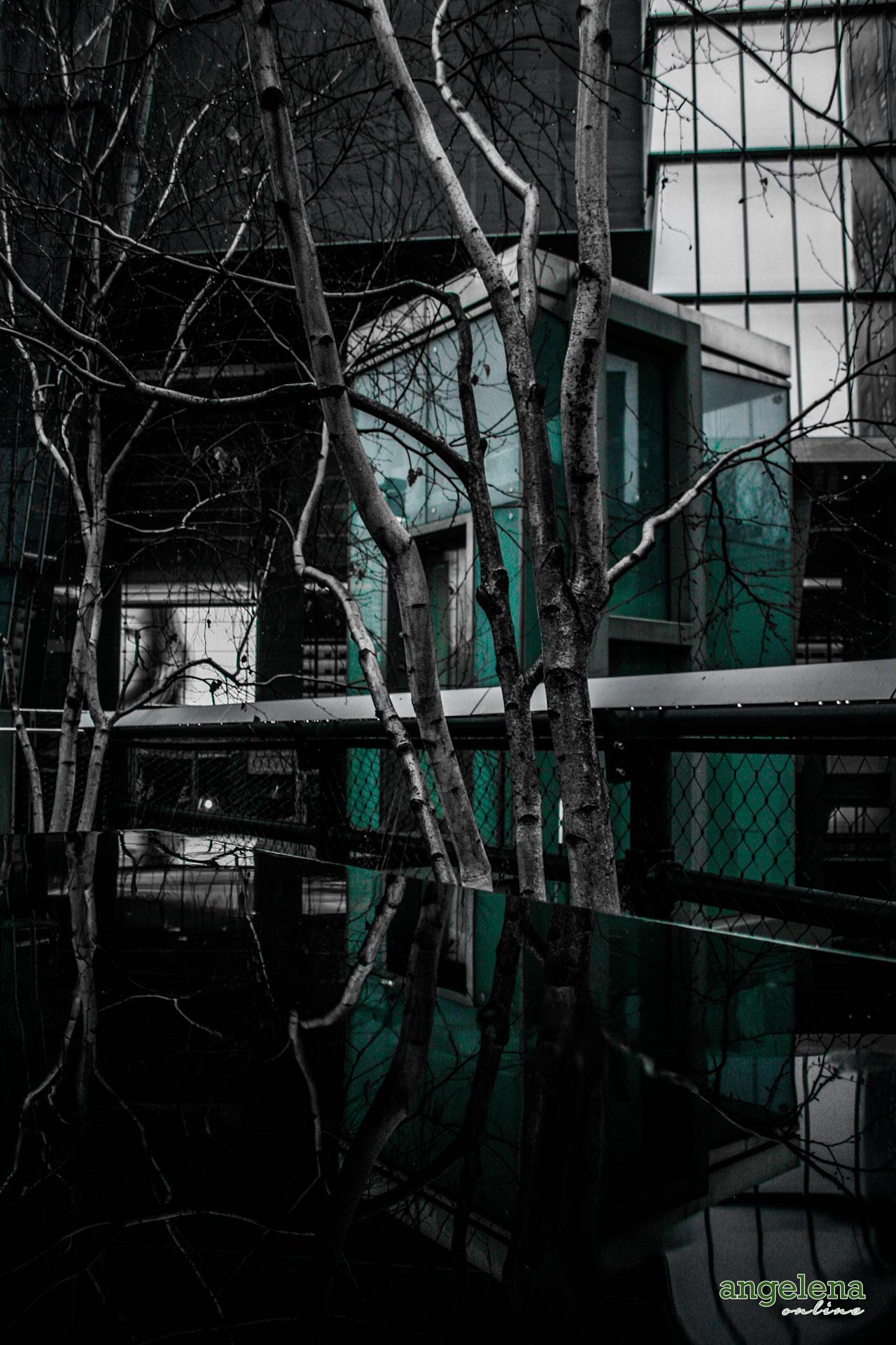 High Line Reflection