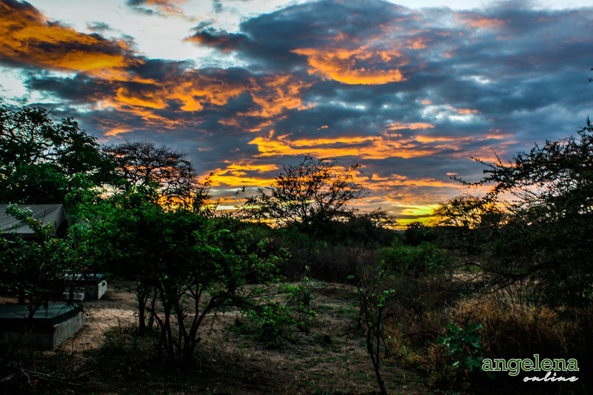 Sunrise Vwaza Marsh