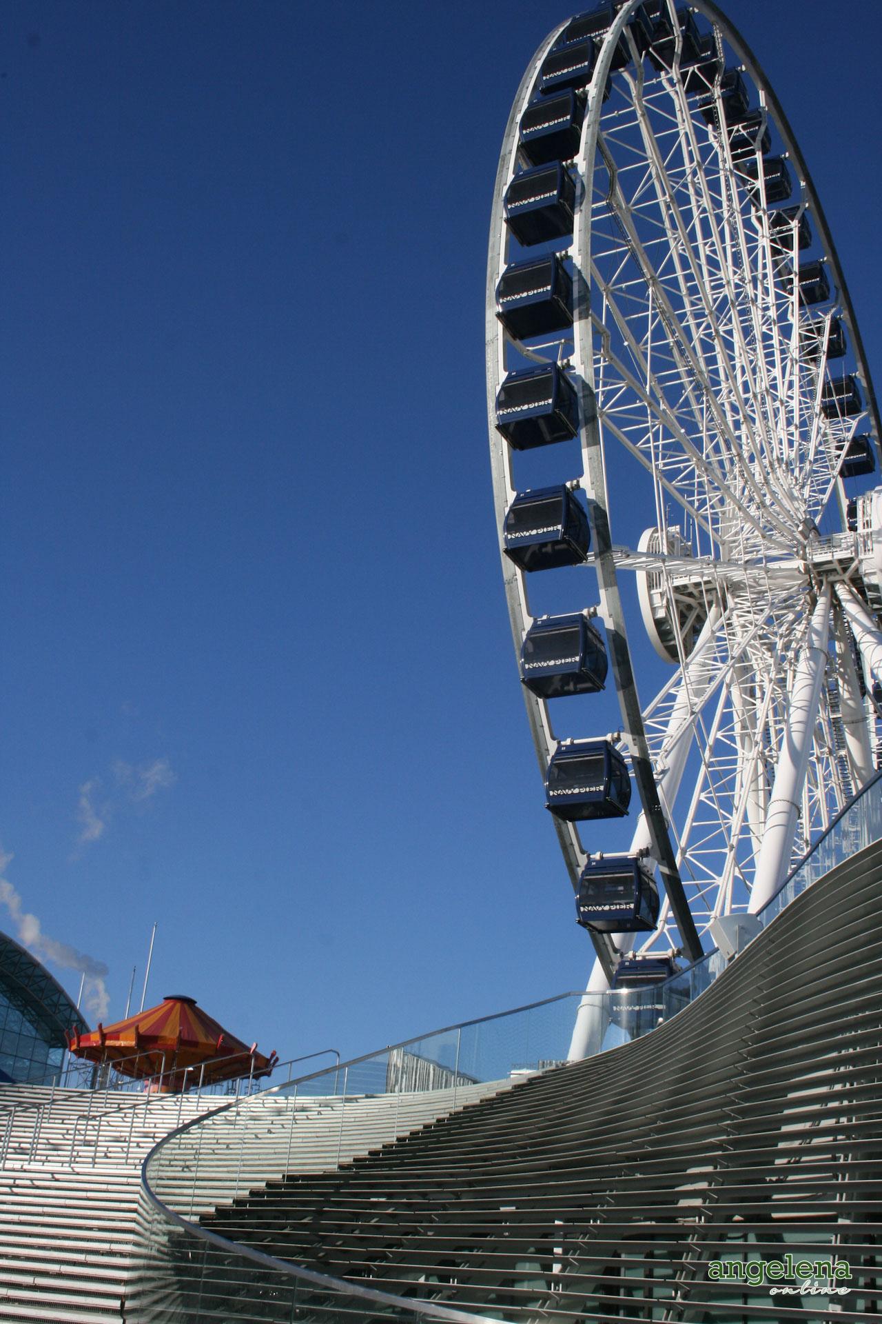 Wheel Chicago